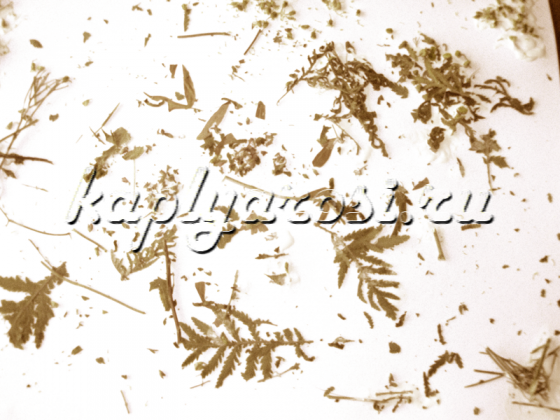 Рисунок сухими листьями