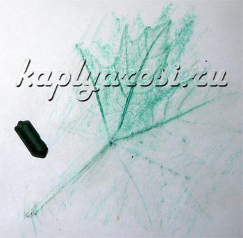 Листочки переводилки
