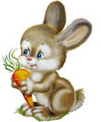 Морковка для зайки