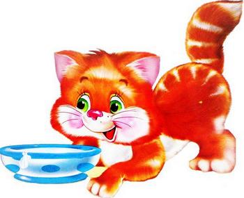 Кошка и чашечка