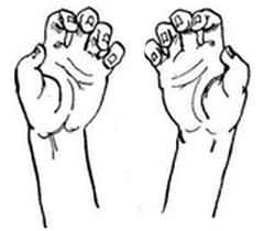 Упражнения для пальчиков 2
